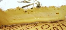 "BEYOND CHEDDAR: On The Rouzaire's Brie-Like ""Fougerus"" From Ile-de-France"