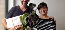 "GREENLIGHT: Local Company ""Patch"" Brings Urban Gardening Inside The Home"