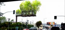 VANCOUVER WOULD BE COOLER IF #195: Our Ugly Urban Billboards Became Gardens