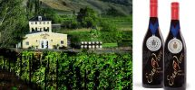 "GOODS | The Similkameen's ""Eau Vivre Winery"" Hosting Open House December 6-8"