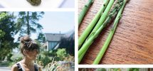 VICTORY GARDENS | On The Rewarding Awesomeness Of Home Grown Asparagus