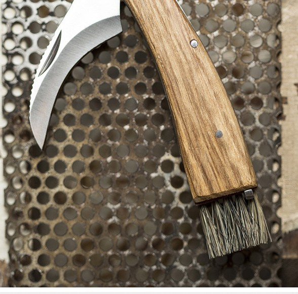 COOL THING WE WANT #440 | This Wood-Handled Mushroom Foraging Folding Knife