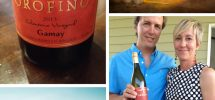 "MESSAGE IN A BOTTLE | Sipping Summer In Orofino's ""Celentano Vineyard"" Gamay 2013"