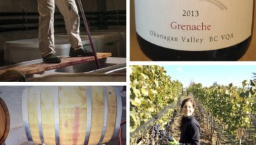 "MESSAGE IN A BOTTLE | Deciphering The Expressive ""Stag's Hollow"" Grenache 2013"