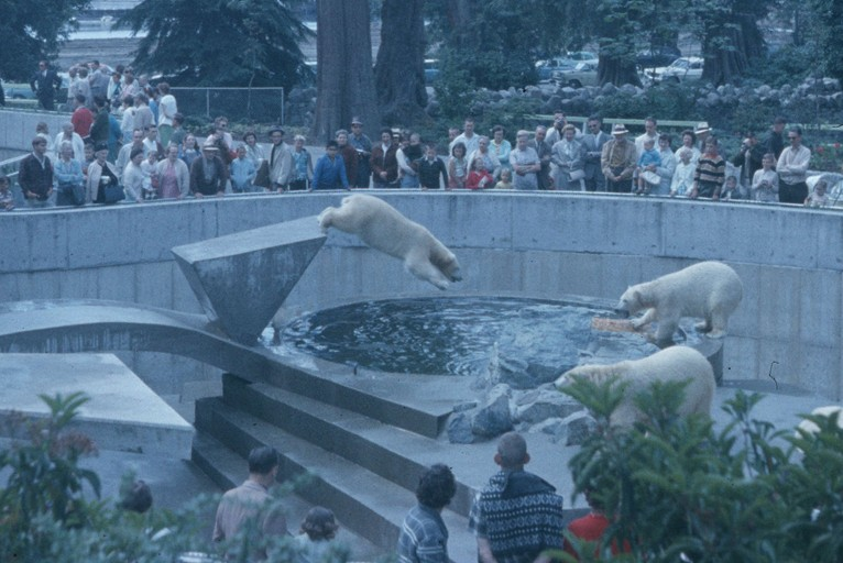 YOU SHOULD KNOW | More About The Stanley Park Zoo, A Vancouver Institution Until 1996