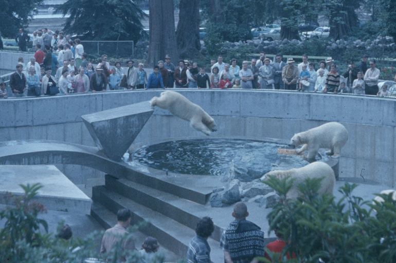 YOU SHOULD KNOW | More About The Stanley Park Zoo, A Vancouver ...