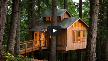 VANCOUVER WOULD BE COOLER IF #245 | Treehouses Helped Solve Its Housing Crisis