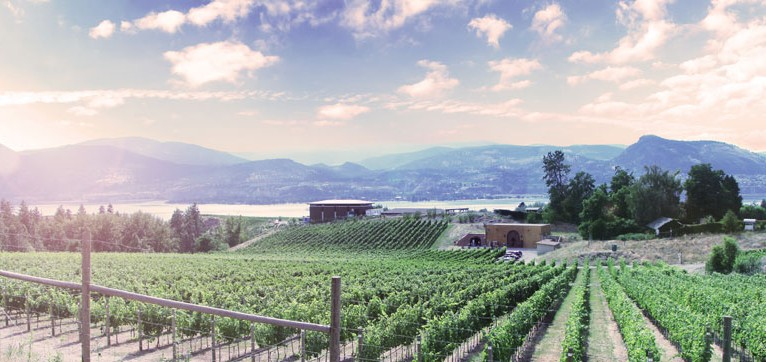 GOODS | Naramata's Serendipity Winery Gets Set For 'Movie Night Under The Stars' & More