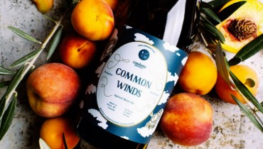 AWESOME THING WE DRANK #703 | Cross Border Collab Crafts Brilliant 'Common Winds'